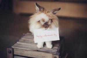 """Alt=""""San Valentino"""""""