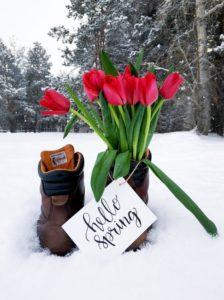 """Alt=""""primavera"""""""